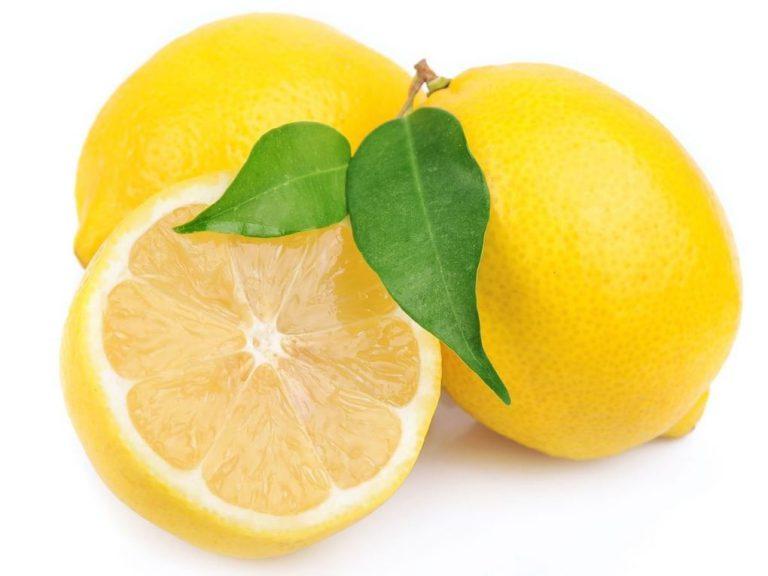 Lemon Eltayseer For Import & Export