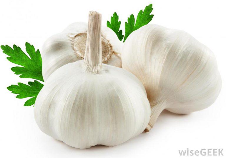 Garlic Eltayseer For Import & Export