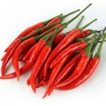 red chili pepper Eltayseer For Import & Export